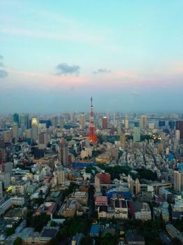 東京タワー ヒルズ.jpg